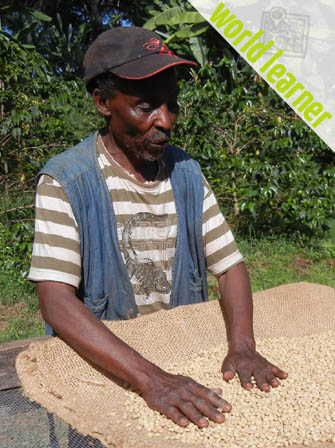 Coffee Farmer Dennis from Kilimanjaro