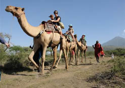 Camel Riding in Tanzania