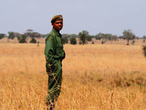project ranger in tsavo kenya